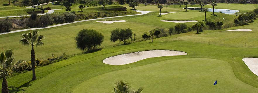 Aerial View of the green of Baviera Golf
